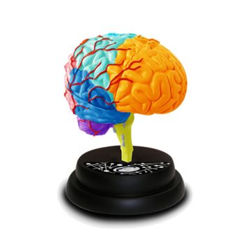 Eastcolight Ar Brain Professional Model Online in UAE