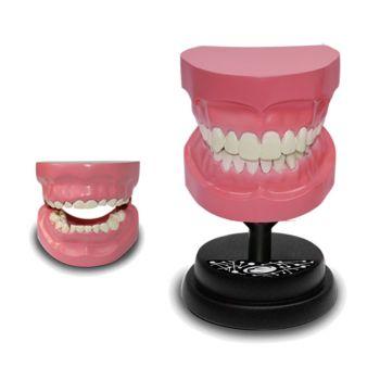 Eastcolight AR Teeth Professional Model Online in UAE