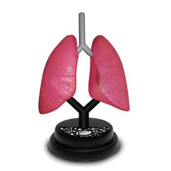 Eastcolight  AR Respiratory Professional Model Online in UAE
