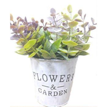 Iron Bucket Flowerpot